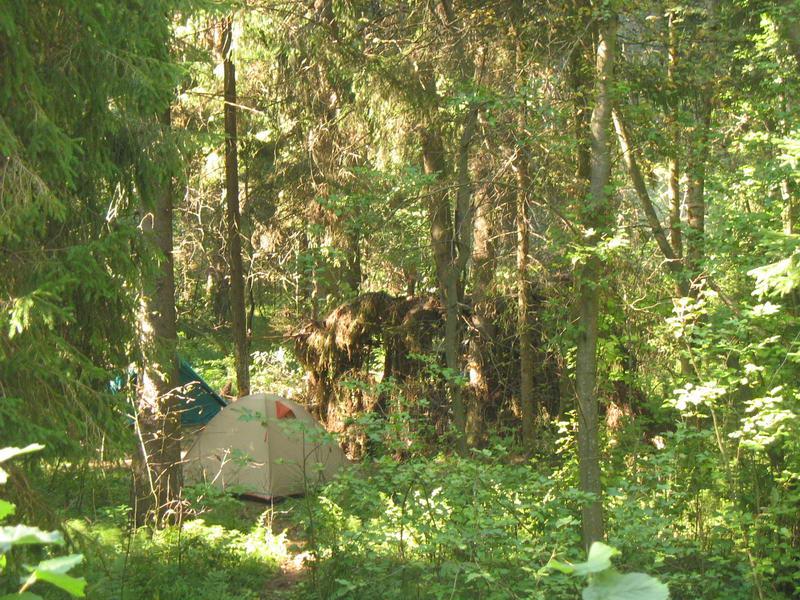 Лагерь, пустой, вид почти сверху...