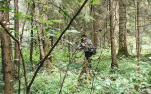 Мазур в лесу 07.2020